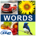 AE Word Guess icon